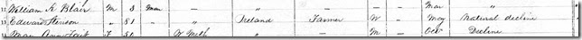 1871 Census Edward Stinson death record Downie, Perth County, Ontario