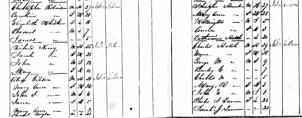 1851 Canada Census Christopher Robinson
